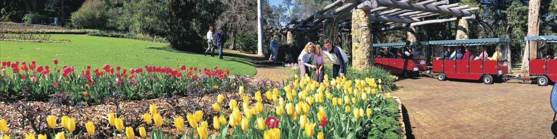 Araluen Botanic Park Perth Hills