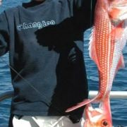 Esperance Diving Fishing Esperance Island Cruises