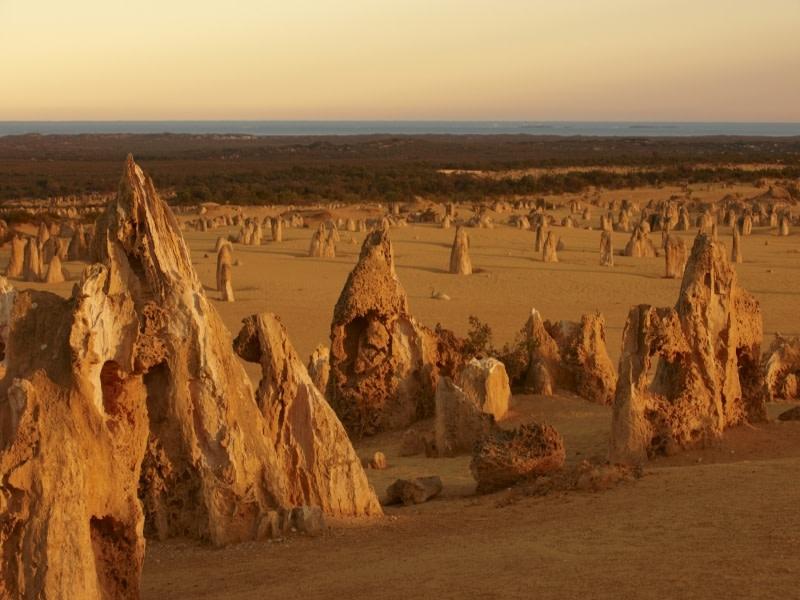 Autopia Tours Western Australia