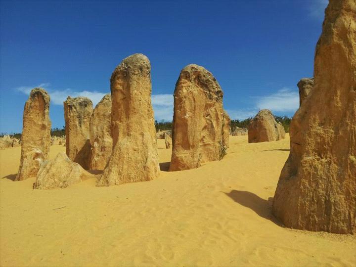 Travel Western Australia Pty Ltd