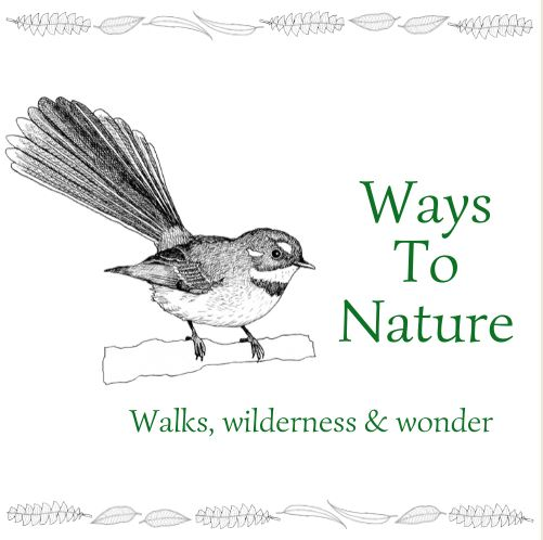 Ways To Nature